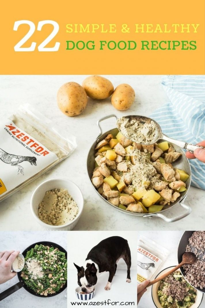 10 Homemade Dog Food Recipes - free PDF download. How to make ..