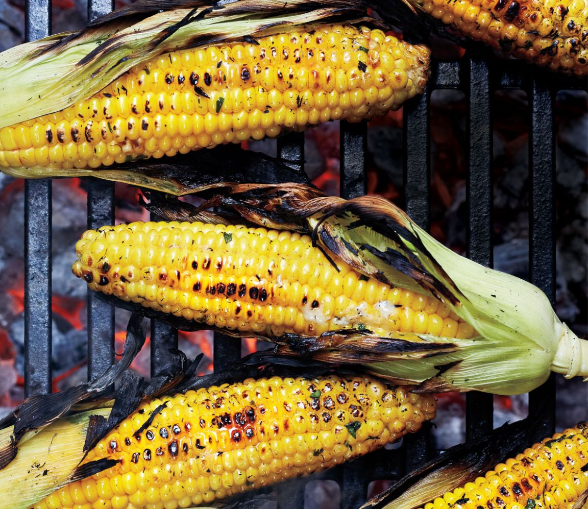 12 Healthy Grilling Recipes to Help You Lose Weight - Weight Loss Grill Recipes
