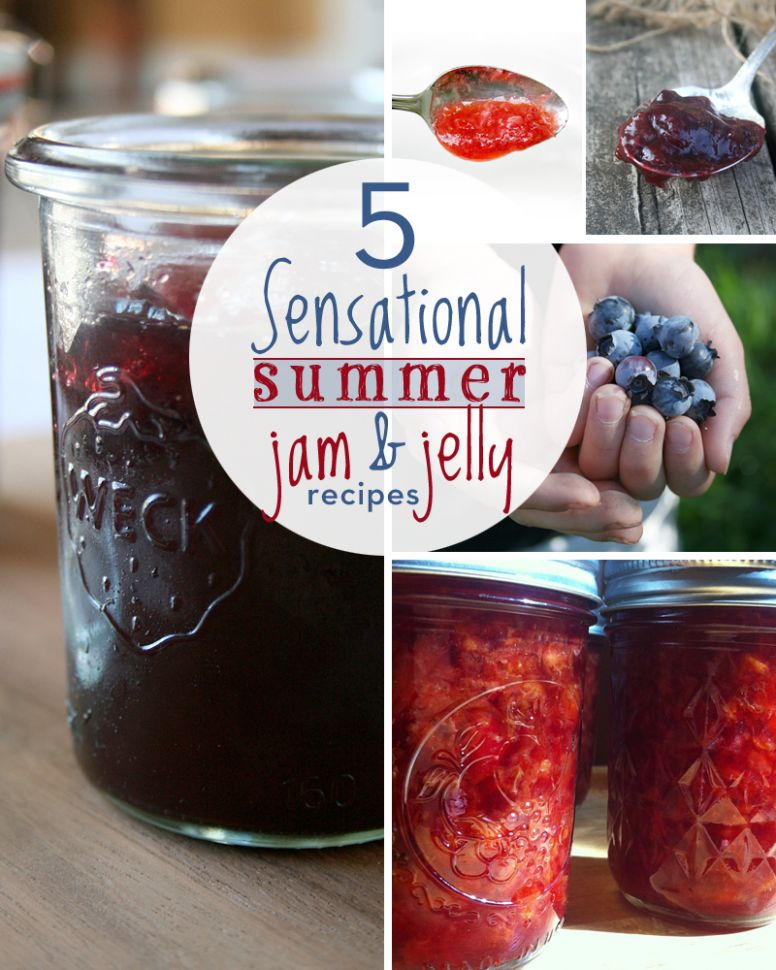 8 Sensational Summer Jam and Jelly Recipes - My Humble Kitchen