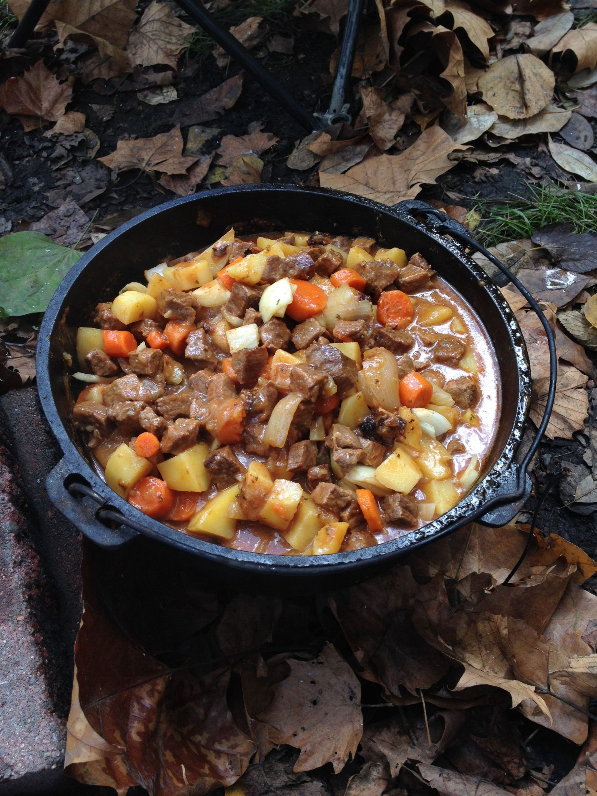 Beef Stew cooked over an open fire in our Dutch oven. | Fire ...