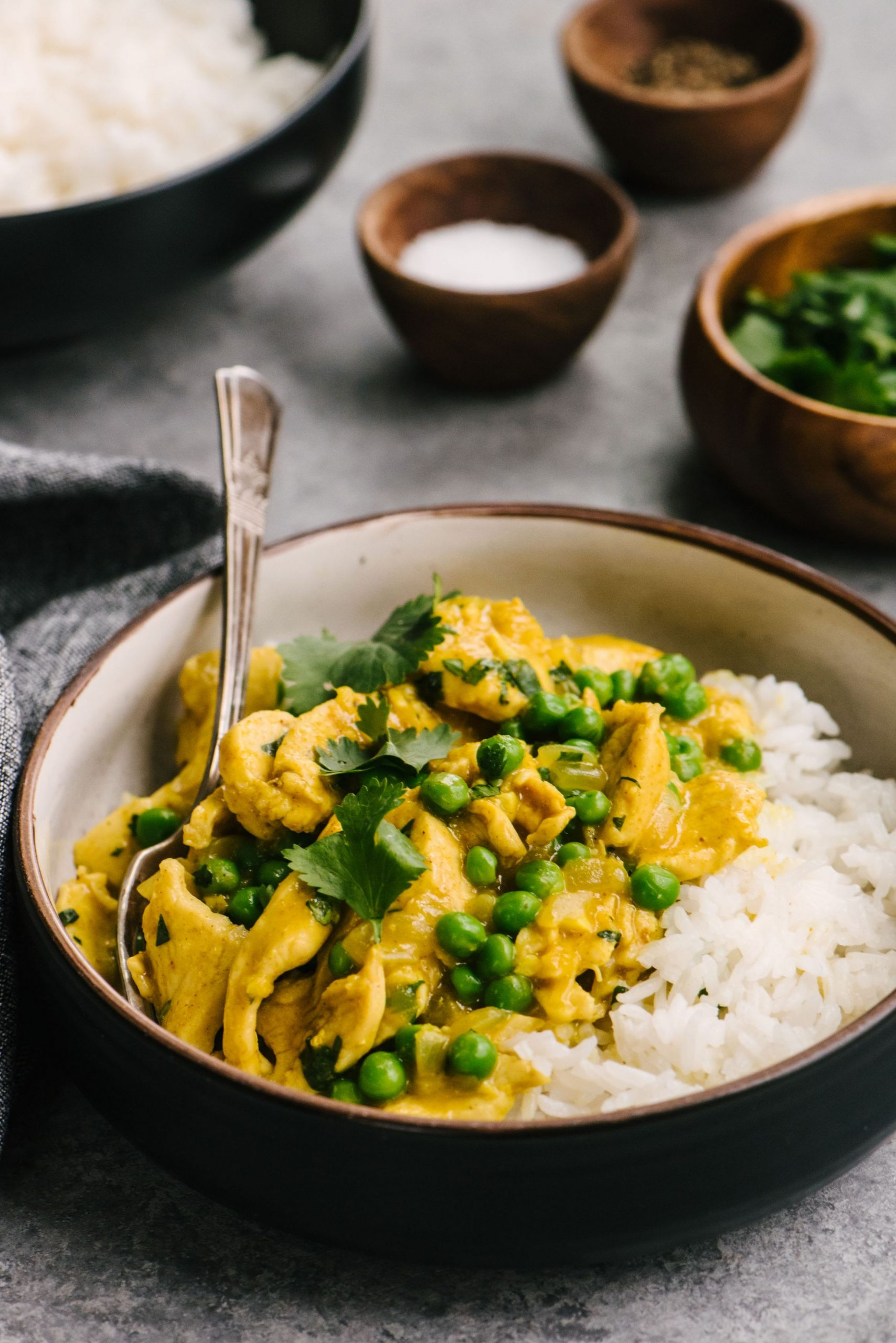 Chicken Curry - Chicken Curry Recipes