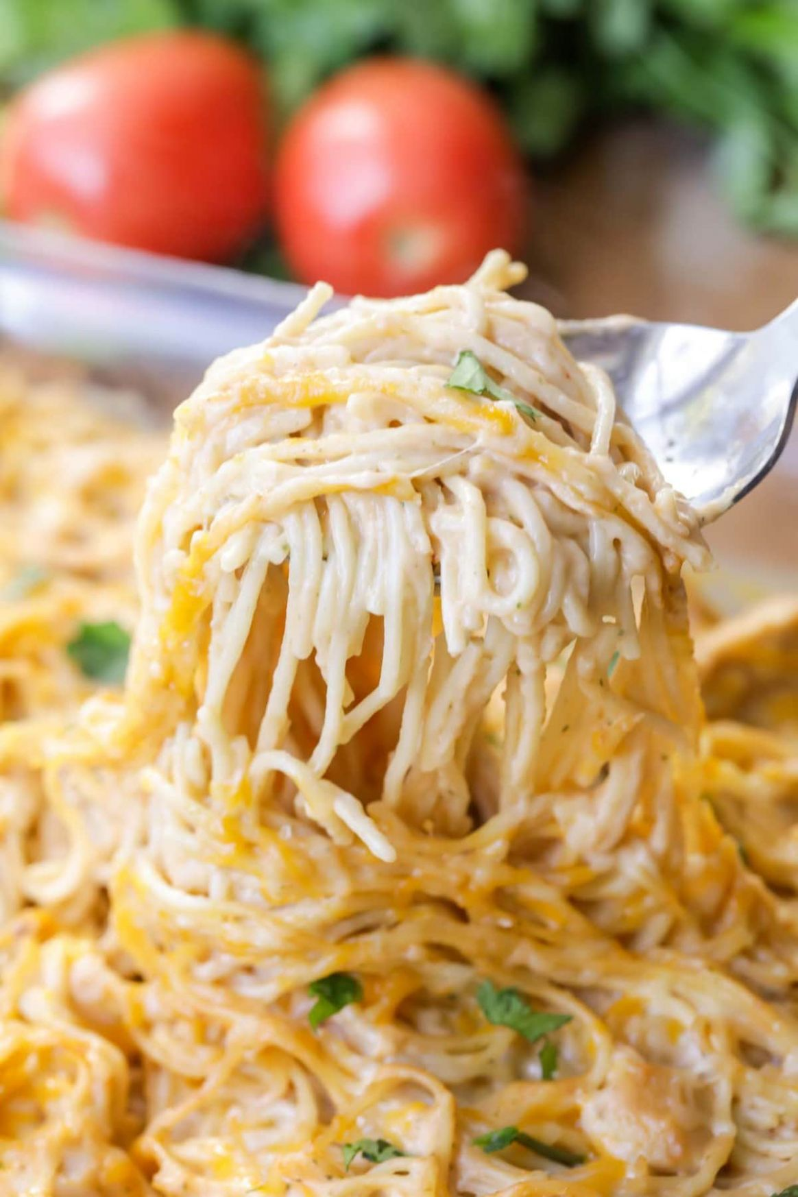 Chicken Spaghetti Recipe - Recipes Chicken Spaghetti
