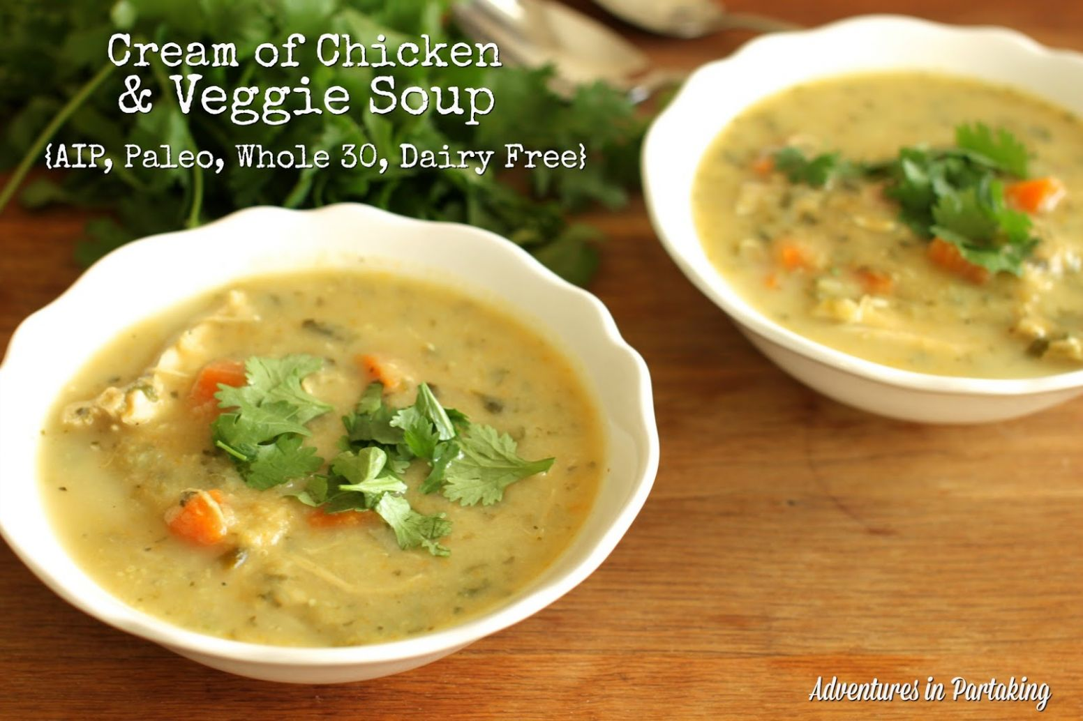 Cream of Chicken and Veggie Soup {AIP, Paleo, Whole 10, Dairy Free ..