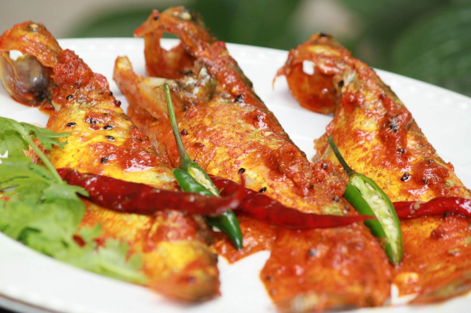 Creamy Indian Butter Fish Recipe - Creamy Pabda Fish