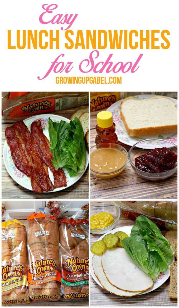 Easy Lunch Sandwich Ideas for School - Sandwich Recipes School