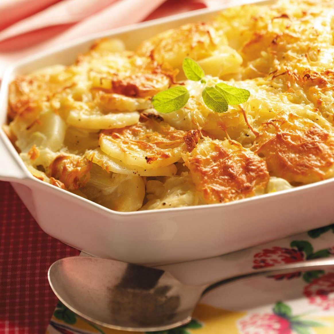 Fennel-Potato Au Gratin - Recipes Potato And Fennel