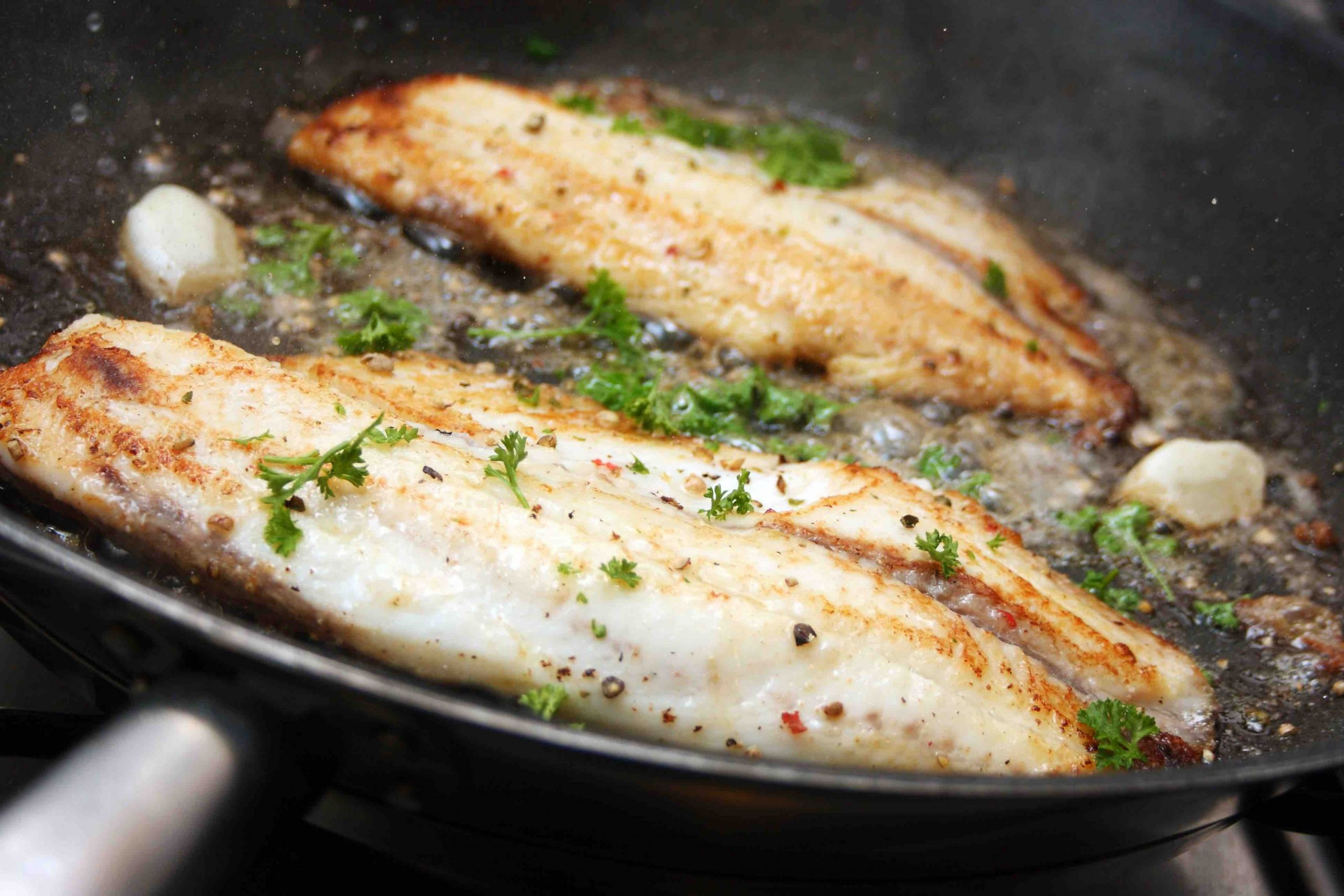 Fish and Seafood Recipes & Dishes