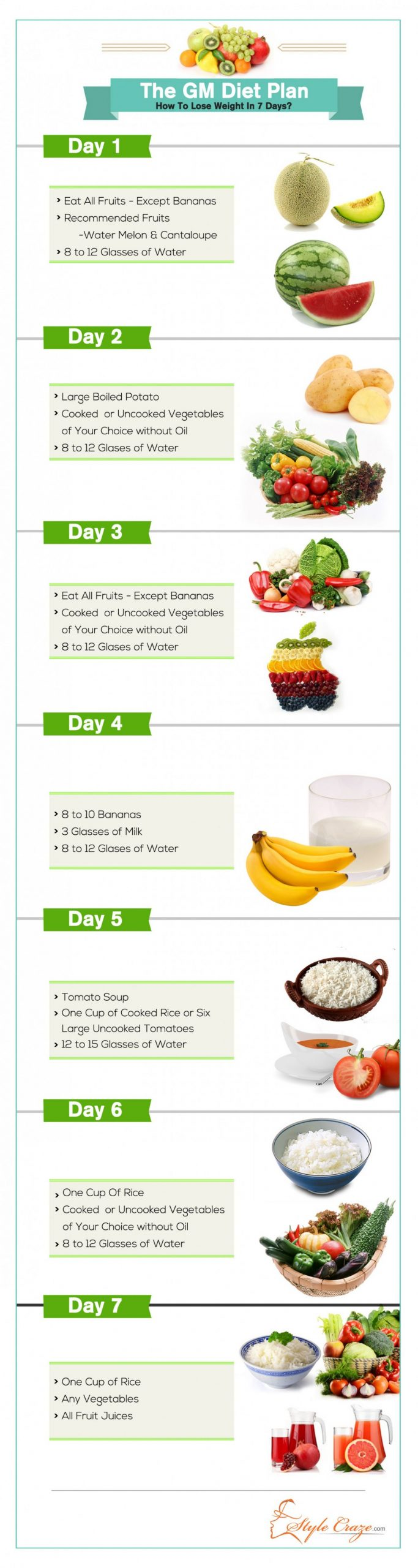 gm diet plan chart pdf - Mayota
