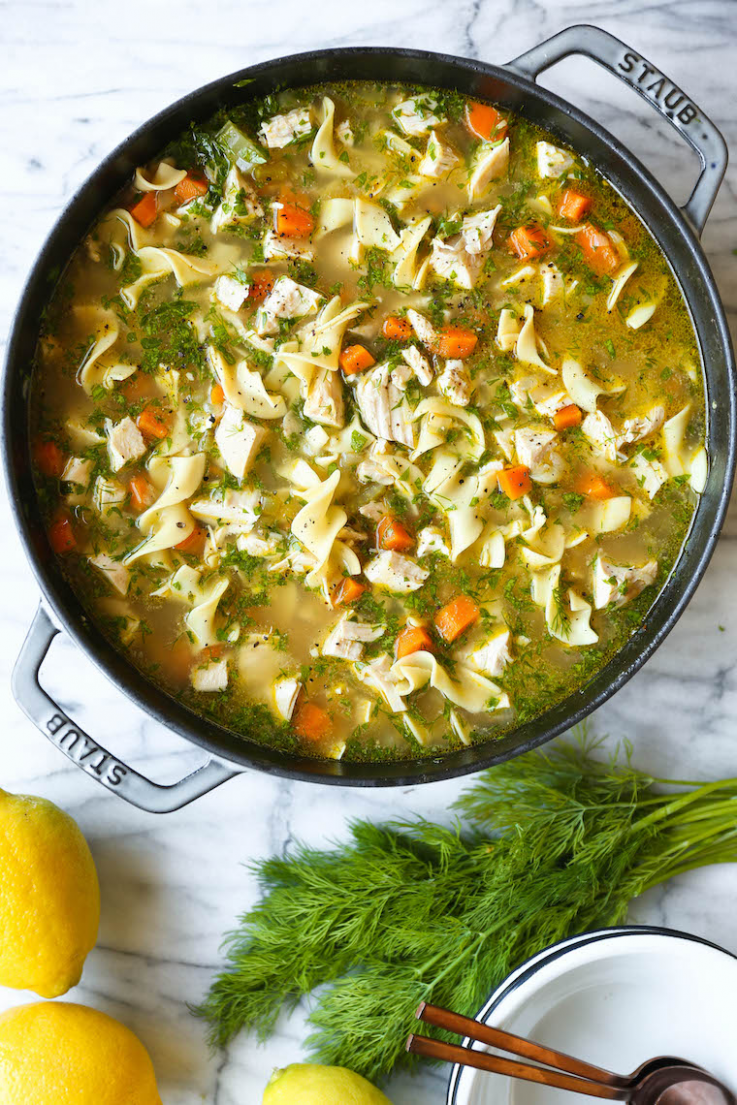 Homestyle Chicken Noodle Soup - Soup Recipes Damn Delicious