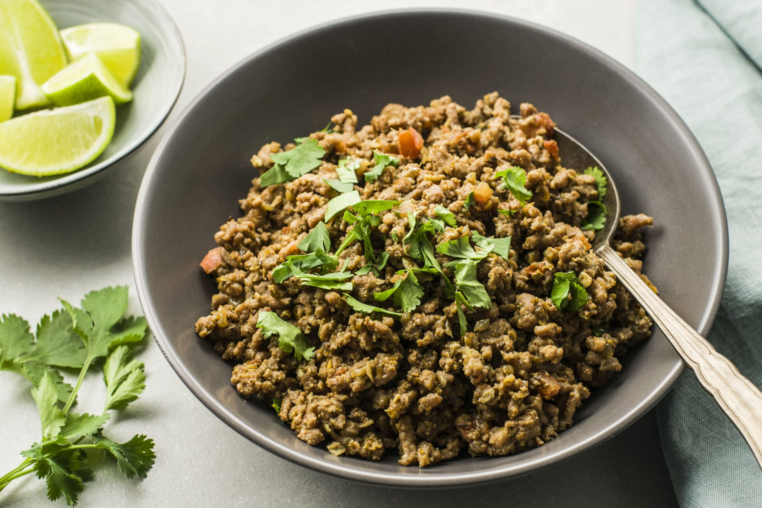 Indian Masala Kheema (Dry Spicy Minced Meat)
