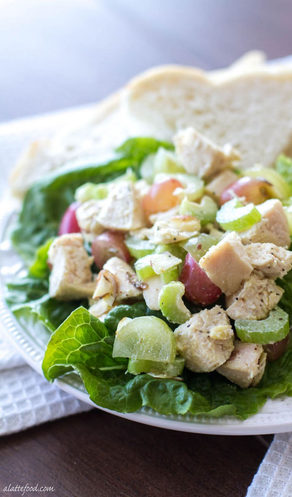 Light and Healthy Chicken Salad Recipe - Salad Recipes Light
