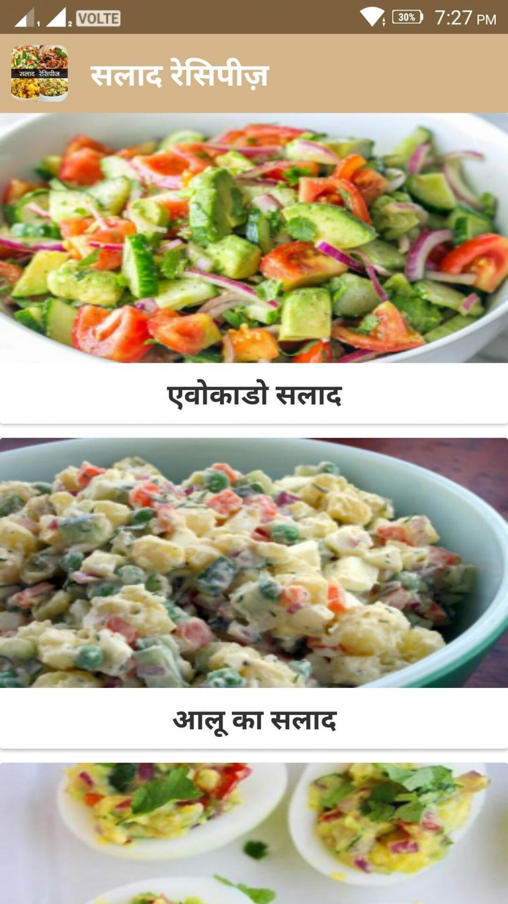 Salad Recipe in Hindi for Android - APK Download - Salad Recipes Hindi
