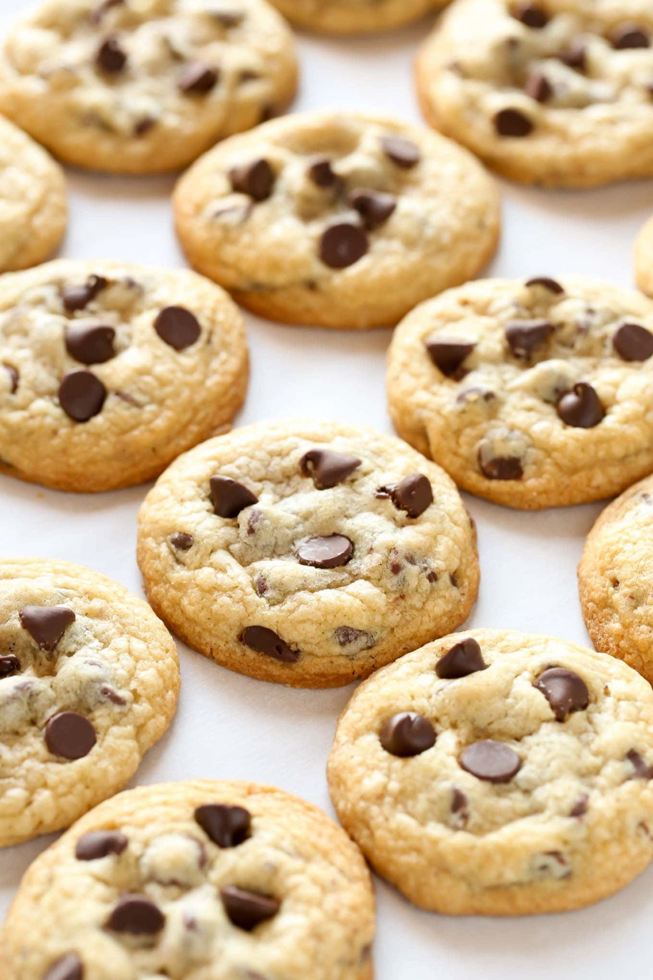 Soft and Chewy Chocolate Chip Cookies - Chocolate Chip Recipes