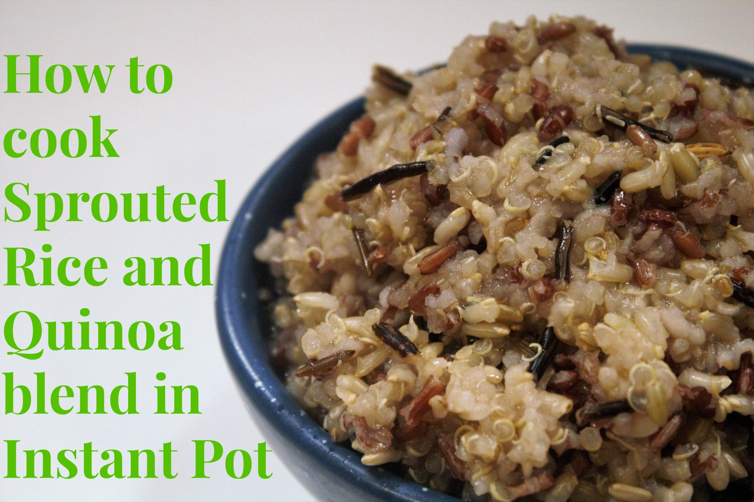 Sprouted Rice and Quinoa in Instant Pot - Recipes With Quinoa Rice Blend