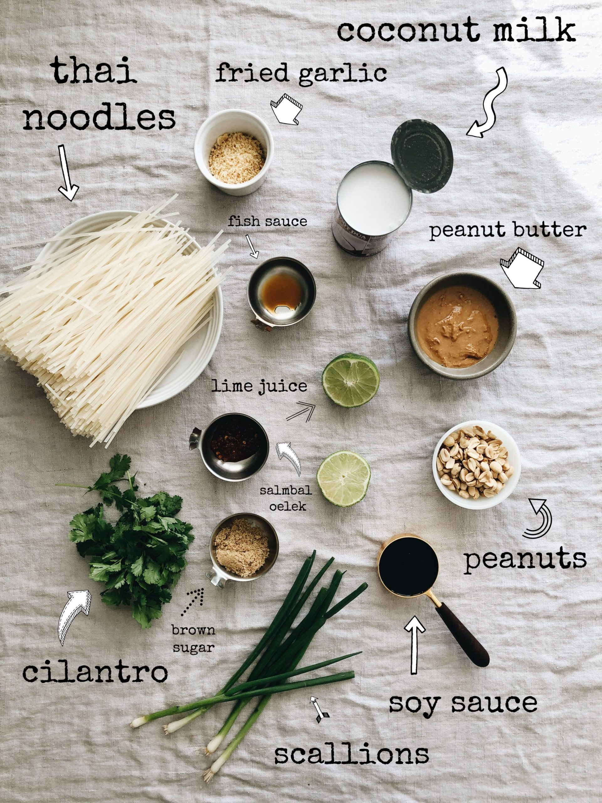 Thai Coconut Noodles