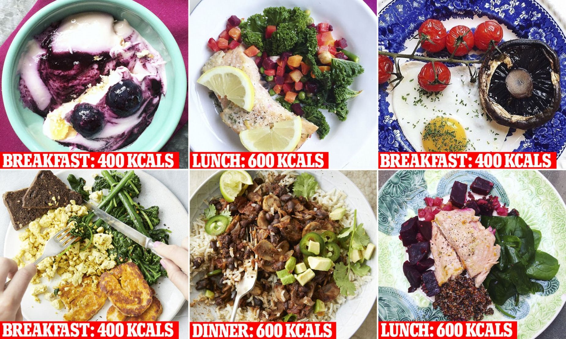 The meals that will guarantee you eat 9 calories or less | Daily ..