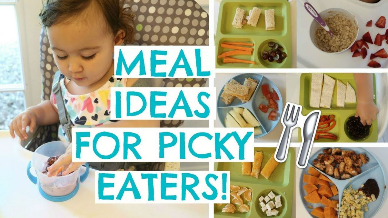 TODDLER MEALS FOR PICKY EATERS | TODDLER MEAL IDEAS | Hayley Paige - Food Recipes For Picky Eaters