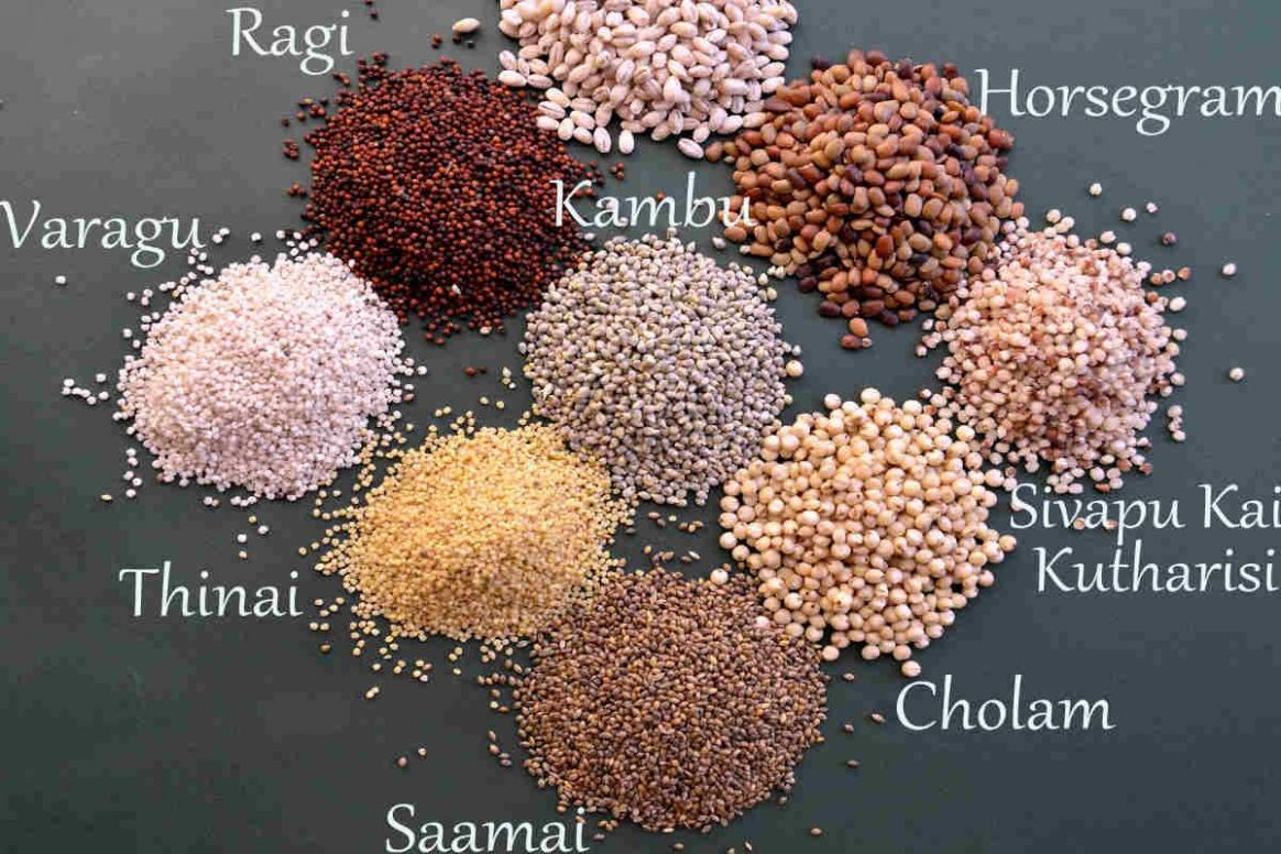 Types Of Millets And Health Benefits Of Millet Grain - Truweight ..